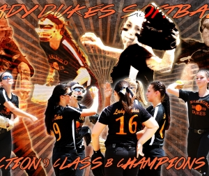 MHS softball poster STYLED copy.jpg